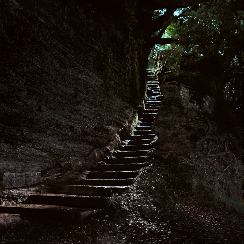 Guy_Robinson_landscape_photographer_auckland_cliff_steps