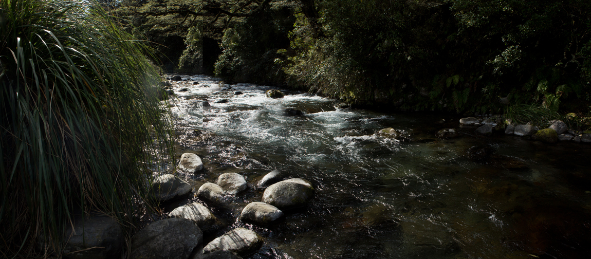 Guy_Robinson_landscape_photographer_auckland_flowing_stream_nature